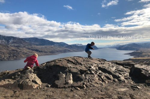 Kamloops Lake Rest Stop