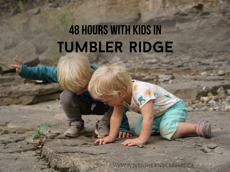 48 Hours with Kids in Tumbler Ridge