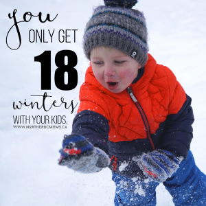 You only get 18 winters with your kids, so make it awesome.