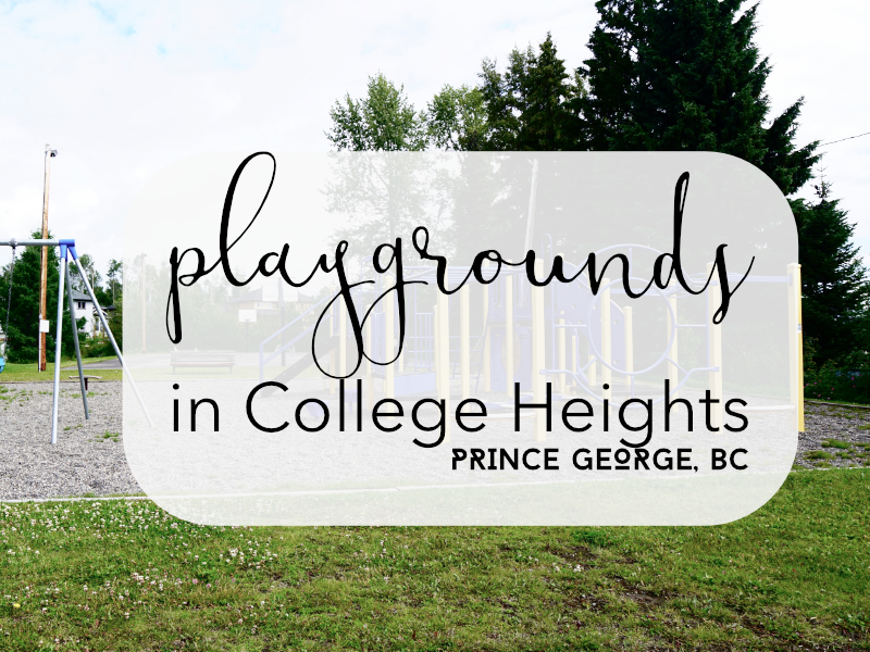 Playgrounds in College heights